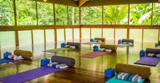 Yoga Retreat in Costa Rica Jungle