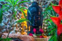 Buddha head at yoga retreat in Costa Rica
