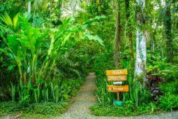 Hotel and Yoga Retreat in Costa Rica Jungle
